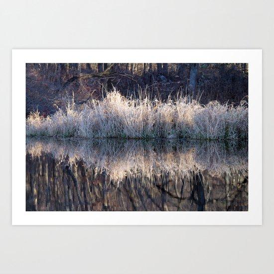 Winter Reflection Art Print