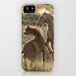 Rough Play iPhone Case
