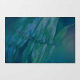 Midnight Green Canvas Print