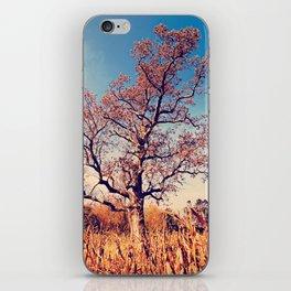 Cornfield Tree iPhone Skin