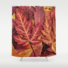 Colorful Autumn Maple Leaf Indian Summer Red Shower Curtain