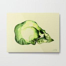 Painted Skull #2 Metal Print