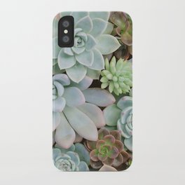 SUCCULENTS ARRANGEMENT I iPhone Case