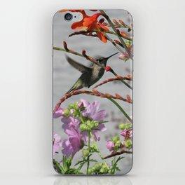 Hummingbird in Flight iPhone Skin