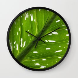 Spotted with White: Leaf Wall Clock