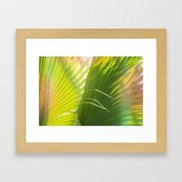 Summer, Forever Framed Art Print
