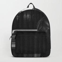 Elevation Backpack