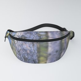Evening in the Forest Fanny Pack