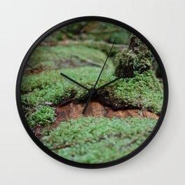 Fuzz Wall Clock