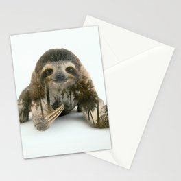 Arctic Sloth Stationery Cards
