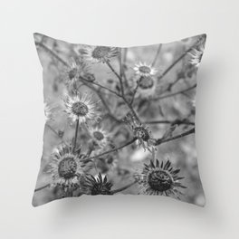 dried flowers in the field Throw Pillow
