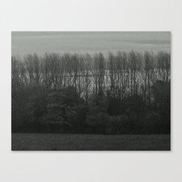 Rows Canvas Print