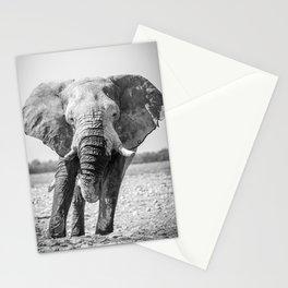 B&W Elephant 5 Stationery Cards