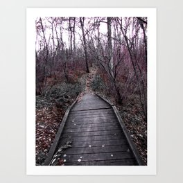 Beaten Path Art Print