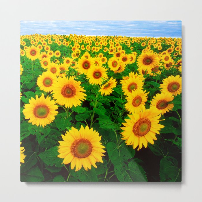 Sunflower art decoration ideas best design Metal Print