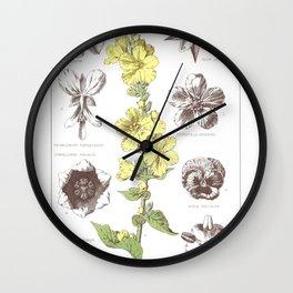 Vinca Major, Pelargonium Tomentosum, Convallaria Majalis, Potilla Anserna, Geum Urbanum, Potentilla Wall Clock