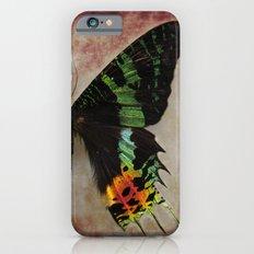 Sunset Moth Wing iPhone 6s Slim Case