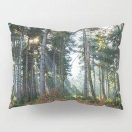Great Owl Pillow Sham