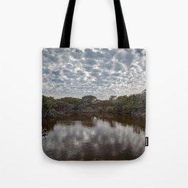 Brown Lake Tote Bag