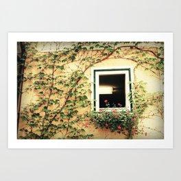 Window and ivy Art Print