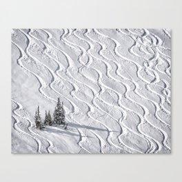 Powder tracks Canvas Print