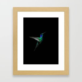 Hummingbird - 114 Framed Art Print