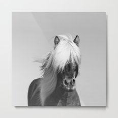 Portrait of a Horse in Scotish Highlands Metal Print