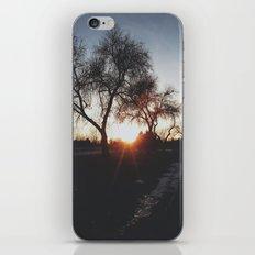 leak II iPhone & iPod Skin