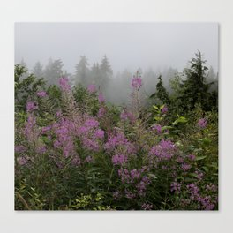 Purple meadow dream Canvas Print