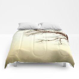 Leafless Comforters