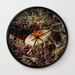 Just A Plain Ole' Butterfly Wall Clock