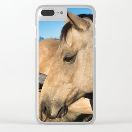 Shy - Horse Plays Coy in Western Wyoming Clear iPhone Case