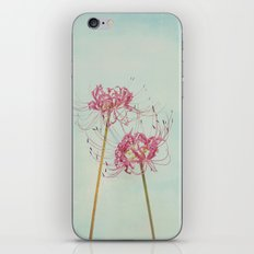 Spider Lily Autumn Botanical iPhone & iPod Skin