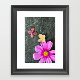 Flowers of Summer Framed Art Print