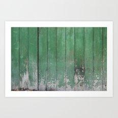 Wood Texture 9912 Art Print