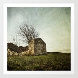not just naked branchs and falling stones Art Print