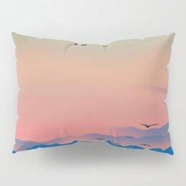 Prop plane Pillow Sham