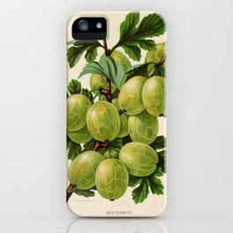 Canadian Horticulturalist 1888-96 - Whitesmith Gooseberry iPhone Case