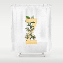 Letter 'Z' Monogram Shower Curtain