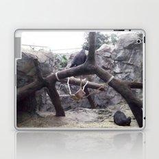 Zoo Laptop & iPad Skin