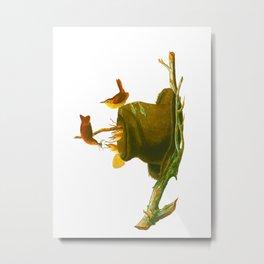 House Wren Bird Metal Print
