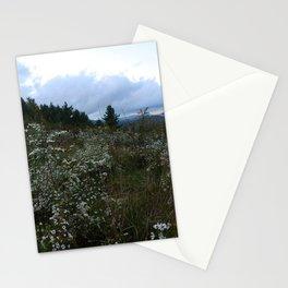 Fieldwork Stationery Cards