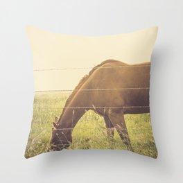 Texas Horse Grazing Throw Pillow