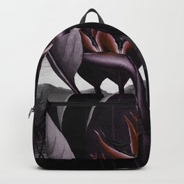 Birds of Paradise : Temple of Flora Dark Backpack