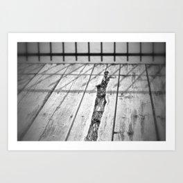 Black and white-wood grain Art Print