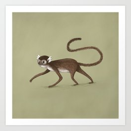 Squirrel Monkey Walking Art Print