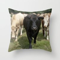 cows Throw Pillows featuring Cows by Rachel's Pet Portraits
