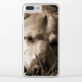 Tired Tucker Clear iPhone Case