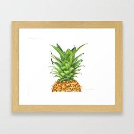 Watercolor Pineapple Framed Art Print