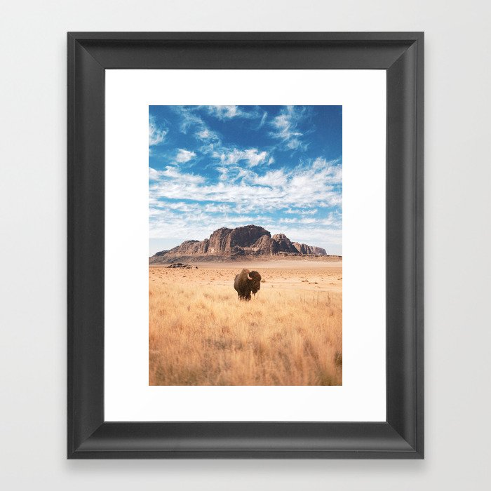 The Lonely Bison, Salt Lake City, Utah-Desert Landscape Gerahmter Kunstdruck